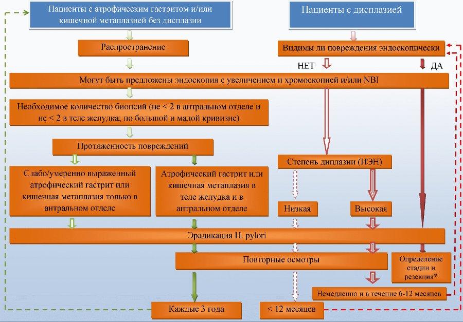 метаплазией желудка и